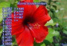 หวยดับหน่วยชบา ดับสิบดอกแก้ว แม่นๆ งวด16/7/63