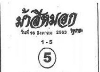 หวยซองดัง ม้าสีหมอก16/8/63