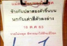 ปริศนานครสวรรค์งวดนี้ กุมารทองให้โชค16/10/63