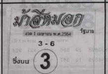 หวยซองดัง ม้าสีหมอก1/4/64