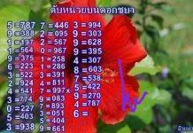 หวยดับหน่วยชบา ดับสิบดอกแก้ว แม่นๆ งวด2/5/64