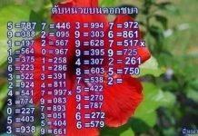 หวยดับหน่วยชบา ดับสิบดอกแก้ว แม่นๆ งวด16/9/64
